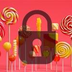 nexus2cee_lp-lock.jpg