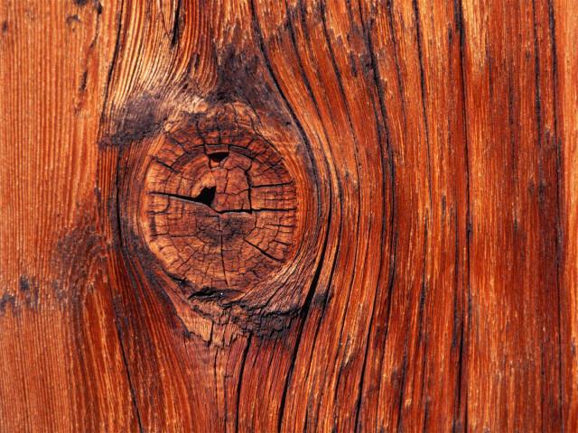 wood wallpaper (5)